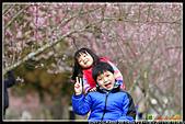 2011武陵農場:DSC06294P30.jpg