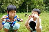 自然課~福山植物園:DSC00116.JPG