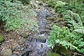 自然課~福山植物園:DSC00143.JPG