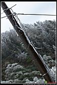 2011武陵農場:DSC06037P22.jpg