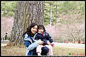 2011武陵農場:DSC06178P64.jpg