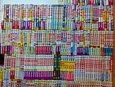 拍賣:20100628305.jpg