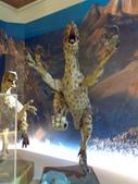 20100204看恐龍展:20100204086.jpg