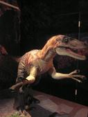 20100204看恐龍展:P1110840.JPG開頭P即是同事相機所拍的哦!