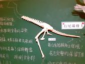20100204看恐龍展:20100204089.jpg