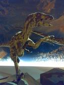 20100204看恐龍展:20100204087.jpg