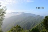 1010922-23銀杏森林:PhotoCap_024.jpg
