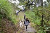 102中區春節旅遊-麻荖漏步道:PhotoCap_521.jpg
