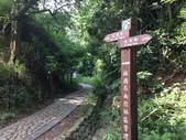 彰化三清宮森林步道:IMG_3436.jpg