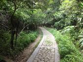 彰化三清宮森林步道:IMG_3437.jpg
