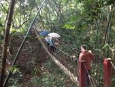 彰化三清宮森林步道:IMG_3448.jpg