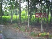 竹山-山中傳奇露營:102_5178.JPG