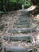 彰化三清宮森林步道:IMG_3439.jpg