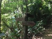 彰化三清宮森林步道:IMG_3451.jpg