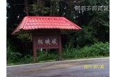 投49茶廠露營:鴻義茶廠_103_6007.jpg