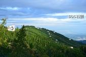 1010811銀杏森林露營:PhotoCap_049.jpg