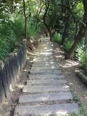 彰化三清宮森林步道:IMG_3445.jpg