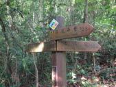 彰化三清宮森林步道:IMG_3446.jpg