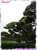 (第三天在富士電視台) 970921~0927日本東京自遊行:IMG_0153.JPG