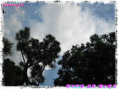 (第三天在富士電視台) 970921~0927日本東京自遊行:IMG_0198.JPG
