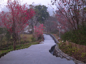 around the Taiwan is:1774675997.jpg