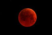 天文攝影:食甚 IMG_5779.jpg 仰角11.8度