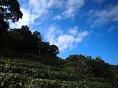 2012.11.15翡翠水庫外拍:AR104670s.jpg