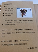 晨市輕食:2014-06-29 070022.JPG