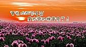 阿志與阿安專輯:3
