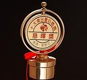 95年飛鷹人得獎事蹟 繽紛照片:十大傑出愛心媽媽慈暉獎 2.JPG