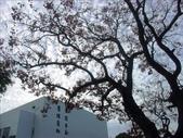 清華大學數學研究所校友會:1825288767.jpg