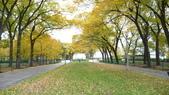 October - Chicago:P1080480.JPG