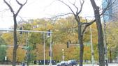 October - Chicago:P1080468.JPG