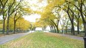 October - Chicago:P1080479.JPG
