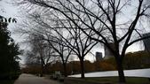 October - Chicago:P1080456.JPG