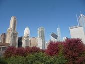Chicago -Foliage - 紅色的千禧公園:P1080364.JPG