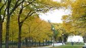 October - Chicago:P1080486.JPG