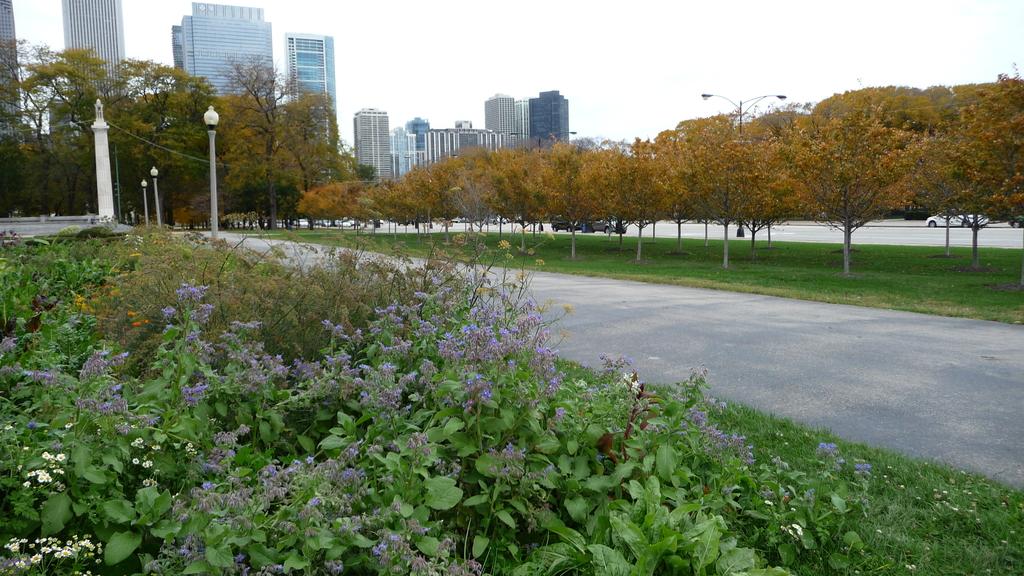 October - Chicago:P1080494.JPG