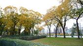 October - Chicago:P1080477.JPG