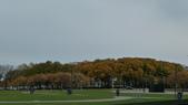 October - Chicago:P1080465.JPG