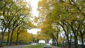 October - Chicago:P1080485.JPG