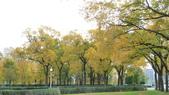 October - Chicago:P1080475.JPG