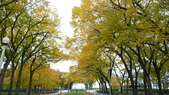 October - Chicago:P1080484.JPG