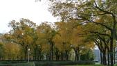 October - Chicago:P1080474.JPG