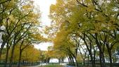 October - Chicago:P1080483.JPG