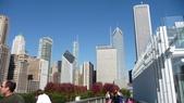 Chicago -Foliage - 紅色的千禧公園:P1080375.JPG