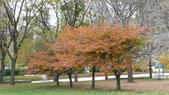October - Chicago:P1080463.JPG