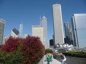 Chicago -Foliage - 紅色的千禧公園:P1080367.JPG