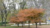 October - Chicago:P1080462.JPG