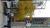 October - Chicago:P1080446.JPG